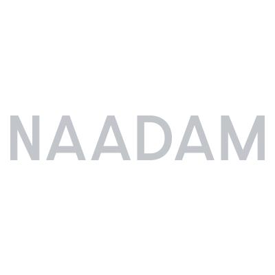 Naadam Logo