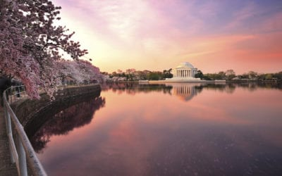 My Home Base – Will Amling, Jet Linx Washington D.C.