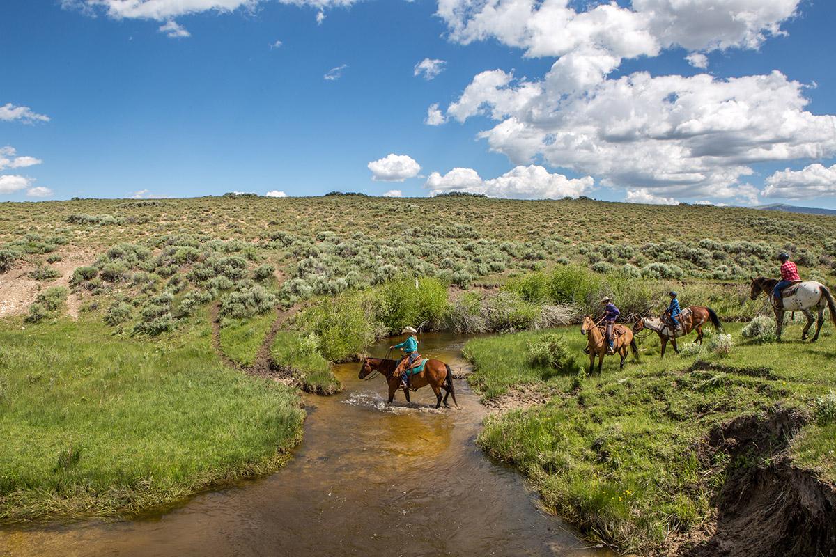 Horseback Riding at BCR2